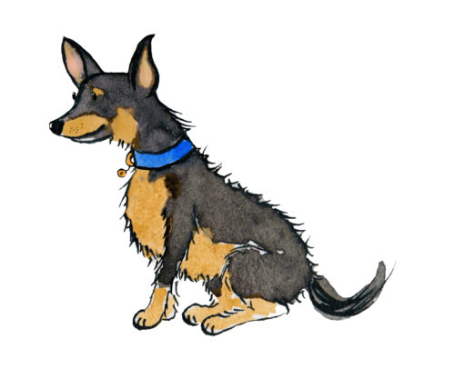 cartoon of stanley the dog